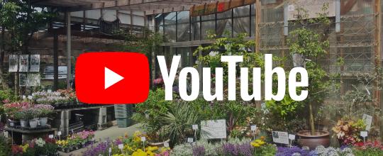 富士庭苑のYouTubeチャンネル